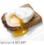 Купить «Яйцо-пашот на тосте», фото № 4301847, снято 11 апреля 2008 г. (c) Food And Drink Photos / Фотобанк Лори