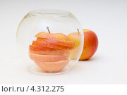 Яблоко в круглой стеклянной вазе. Стоковое фото, фотограф Артем Свистун / Фотобанк Лори