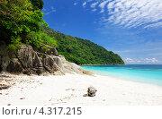 Купить «Песчаный пляж и камни, берег тропического моря», фото № 4317215, снято 29 августа 2012 г. (c) Николай Охитин / Фотобанк Лори