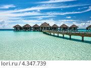 Купить «Деревянный пирс и бунгало на Мальдивах», фото № 4347739, снято 9 декабря 2012 г. (c) Николай Охитин / Фотобанк Лори