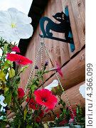 Цветочные декорации. Стоковое фото, фотограф Алёна Ломухина / Фотобанк Лори
