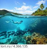 Женщина плавает в окружении рыб у красивого кораллового рифа. Стоковое фото, фотограф Soft light / Фотобанк Лори