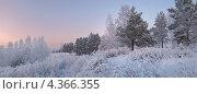 Купить «Вечер в лесу. Зимний пейзаж», фото № 4366355, снято 17 декабря 2011 г. (c) Nikitin / Фотобанк Лори
