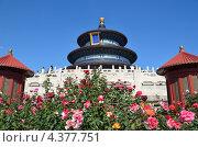 Купить «Пекин, храм Неба», фото № 4377751, снято 9 октября 2012 г. (c) Овчинникова Ирина / Фотобанк Лори