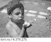Ребенок дует на лепестки розы. Стоковое фото, фотограф Elena Guseva / Фотобанк Лори