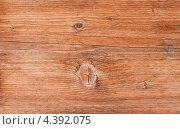 Купить «Текстура дерева», фото № 4392075, снято 20 января 2013 г. (c) Kozub Vasyl / Фотобанк Лори