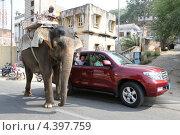 Два внедорожника. Слон и машина на дороге (2012 год). Редакционное фото, фотограф Сергей Аряев / Фотобанк Лори