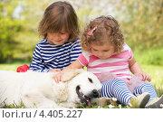 Купить «Двое маленьких детей играют с собакой на летней поляне», фото № 4405227, снято 23 мая 2012 г. (c) Monkey Business Images / Фотобанк Лори
