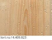 Капли на доске покрытой лаком. Стоковое фото, фотограф Семин Илья / Фотобанк Лори