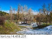 Холмистый лес ранней весной. Стоковое фото, фотограф ValeriyK / Фотобанк Лори