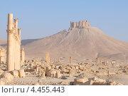 Купить «Руины древнего города Пальмиры, Сирия», фото № 4455443, снято 2 июля 2008 г. (c) Некрасов Андрей / Фотобанк Лори