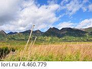 Осень на Камчатке. Стоковое фото, фотограф Денис Васильев / Фотобанк Лори