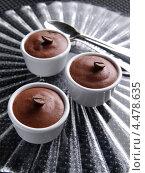 Купить «Формочки с шоколадным муссом», фото № 4478635, снято 20 марта 2019 г. (c) Food And Drink Photos / Фотобанк Лори