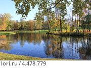 Парк в Красносельском районе Санкт-Петербурга. Стоковое фото, фотограф Андрей Кушнирук / Фотобанк Лори