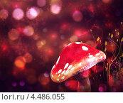 Купить «Волшебный гриб», иллюстрация № 4486055 (c) Анна Павлова / Фотобанк Лори