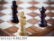 Деревянные шахматы на доске. Стоковое фото, фотограф Георгий Курятов / Фотобанк Лори
