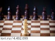 Деревянные шахматы. Белая фигура против черных. Стоковое фото, фотограф Георгий Курятов / Фотобанк Лори