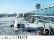 Купить «Самолёт у терминала аэропорта Домодедово», фото № 4514851, снято 10 февраля 2012 г. (c) Losevsky Pavel / Фотобанк Лори