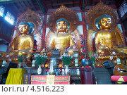 Купить «Три статуи будды в храме, Гуанчжоу, Китай», фото № 4516223, снято 24 ноября 2011 г. (c) Losevsky Pavel / Фотобанк Лори