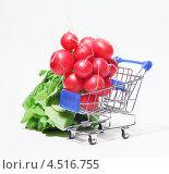 Купить «Пучок редиса в продуктовой корзине», фото № 4516755, снято 4 ноября 2011 г. (c) Losevsky Pavel / Фотобанк Лори