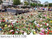 Купить «Цветы на Мемориале жертвам резни в Утейя 27 июня 2011 года в Бергене, Норвегия», фото № 4517139, снято 27 июля 2011 г. (c) Losevsky Pavel / Фотобанк Лори