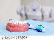 Купить «Искусственная челюсть и голубая зубная щётка», фото № 4517667, снято 25 июня 2011 г. (c) Losevsky Pavel / Фотобанк Лори