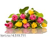 Букет тюльпанов на белом фоне. Стоковое фото, фотограф Peredniankina / Фотобанк Лори
