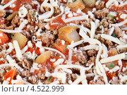 Купить «Замороженная пицца с мясом, сыром, помидорами», фото № 4522999, снято 15 ноября 2011 г. (c) Losevsky Pavel / Фотобанк Лори