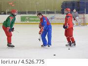 Купить «Открытая ледовая тренировка юниорской, до 18 лет, сборной России по хоккею», фото № 4526775, снято 12 апреля 2013 г. (c) Stockphoto / Фотобанк Лори
