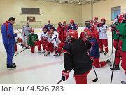 Купить «Открытая ледовая тренировка юниорской, до 18 лет, сборной России по хоккею», фото № 4526783, снято 12 апреля 2013 г. (c) Stockphoto / Фотобанк Лори