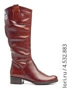 Купить «Женский коричневый сапог на невысоком каблуке», фото № 4532883, снято 29 сентября 2009 г. (c) Бандуренко Андрей / Фотобанк Лори