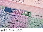 Купить «Шенгенская виза финского консульства», фото № 4534239, снято 10 февраля 2013 г. (c) Литвяк Игорь / Фотобанк Лори