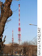 Антенна и дерево. Стоковое фото, фотограф Юрий Ермаков / Фотобанк Лори
