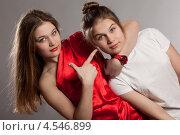 Купить «Сестры-близнецы», фото № 4546899, снято 23 февраля 2013 г. (c) Gagara / Фотобанк Лори