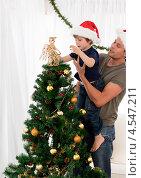 Купить «Отец с сыном наряжают новогоднюю елку», фото № 4547211, снято 25 октября 2010 г. (c) Wavebreak Media / Фотобанк Лори