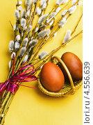 Купить «Пучок ивовых веток и крашеные яйца в корзиночке», фото № 4556639, снято 24 апреля 2013 г. (c) Игорь Соколов / Фотобанк Лори