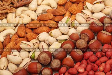 Орехи различных видов, разложенные полосками