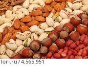 Орехи различных видов, разложенные полосками. Стоковое фото, фотограф Самохвалов Артем / Фотобанк Лори