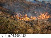 Огонь на берегу Волги. Стоковое фото, фотограф Мария Семечкова / Фотобанк Лори