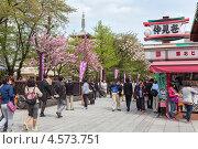 Купить «Посетители храма Sensoji на территории святыни, Асакуса, Токио. Япония», фото № 4573751, снято 10 апреля 2013 г. (c) Кекяляйнен Андрей / Фотобанк Лори