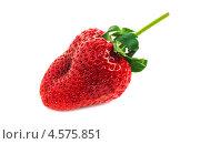 Одна ягода клубники. Стоковое фото, фотограф Алексей Егоров / Фотобанк Лори