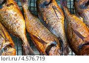 Купить «Рыба дорада, поджаренная на решётке для пикника», эксклюзивное фото № 4576719, снято 9 мая 2010 г. (c) Давид Мзареулян / Фотобанк Лори