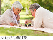 Купить «Пожилая пара играет в шахматы, лежа на покрывале в летнем парке», фото № 4588199, снято 16 ноября 2010 г. (c) Wavebreak Media / Фотобанк Лори