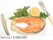 Купить «Жареная семга на тарелке с зеленью», эксклюзивное фото № 4588695, снято 3 мая 2013 г. (c) Яна Королёва / Фотобанк Лори