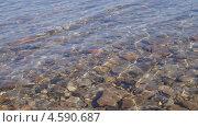 Прозрачная вода Братского водохранилища. Стоковое фото, фотограф Елена Камнева / Фотобанк Лори