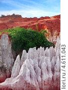 Купить «Разноцветные породы песка и глины в Красном каньоне (Fairy stream). Муйне. Вьетнам», фото № 4611043, снято 12 декабря 2012 г. (c) Татьяна Белова / Фотобанк Лори