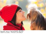 Молодая брюнетка с йоркширским терьером. Стоковое фото, фотограф Александр Жильцов / Фотобанк Лори