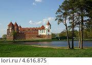 Купить «Мирский замок, Беларусь», фото № 4616875, снято 5 мая 2013 г. (c) Natalya Sidorova / Фотобанк Лори