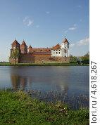 Купить «Мирский замок, Беларусь», фото № 4618267, снято 5 мая 2013 г. (c) Natalya Sidorova / Фотобанк Лори