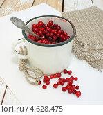 Купить «Моченая брусника в старенькой эмалированной кружке», эксклюзивное фото № 4628475, снято 14 мая 2013 г. (c) Наталья Осипова / Фотобанк Лори